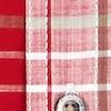 Ennis Short Sleeve Check Shirt Chilli Pepper