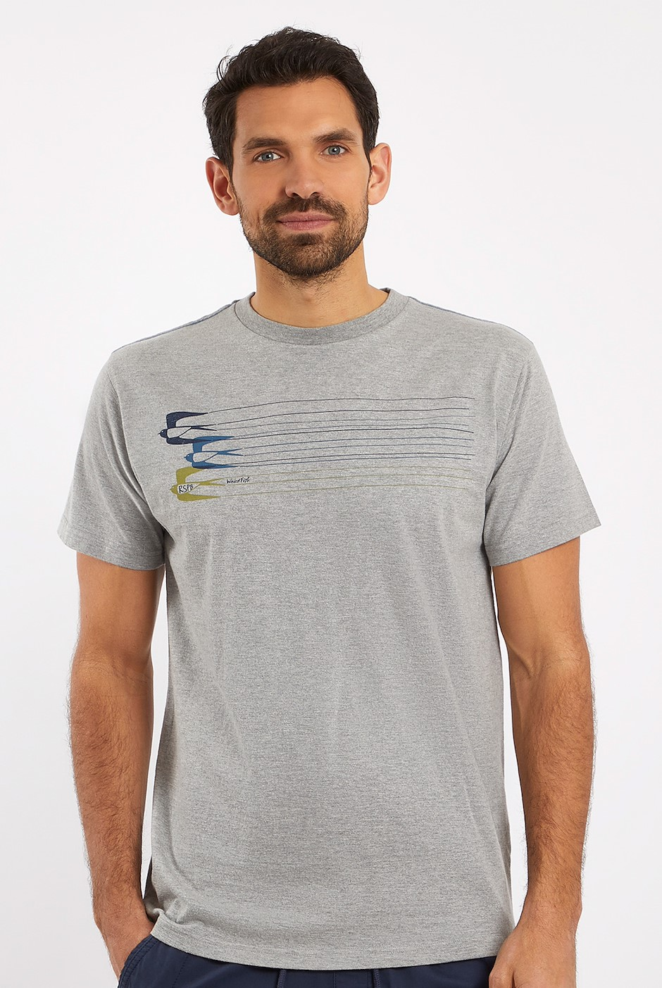 Swallows RSPB Graphic T-Shirt Grey Marl